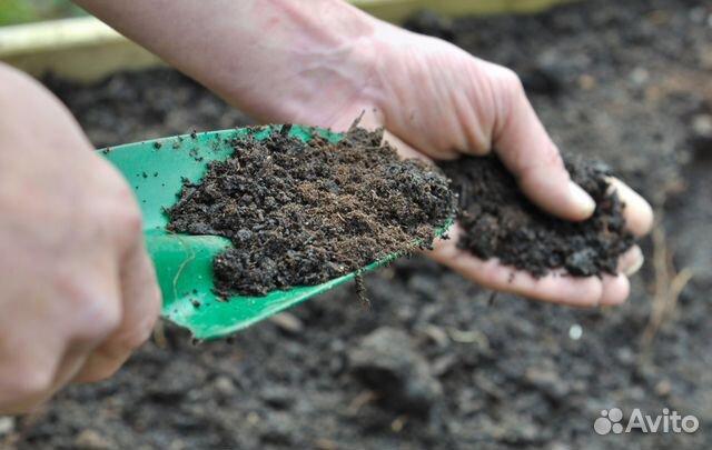Создание плодородного грунта