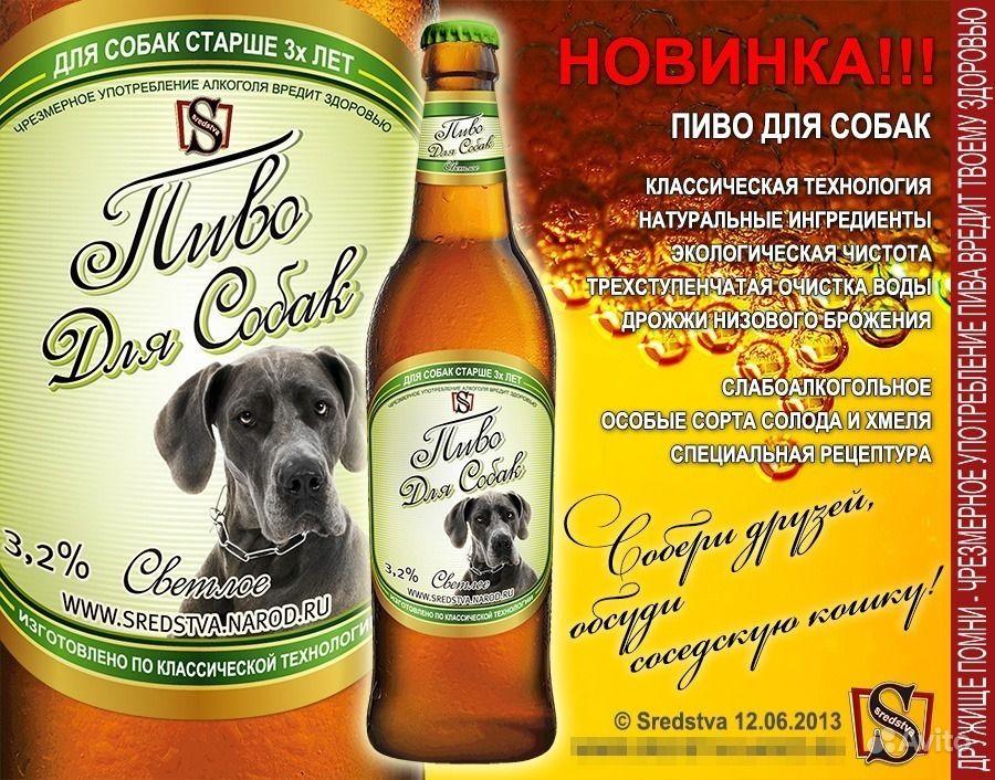 дизайн этикетки пиво для собак, sredstva,