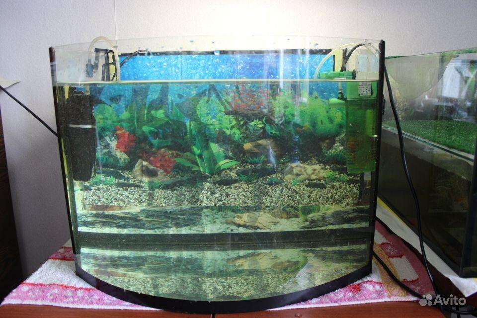 Аквариум 50 литров купить на Зозу.ру - фотография № 1
