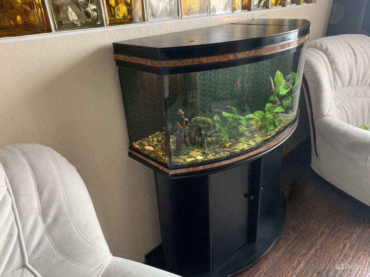Панорамный аквариум 200л, укомплектован, Франция купить на Зозу.ру - фотография № 2