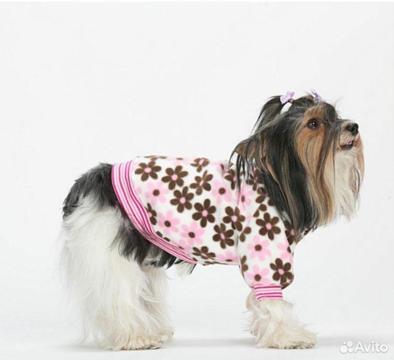 Толстовка для собаки  89109342434 купить 1