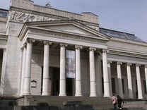 Билет в Пушкинский без очереди без билета