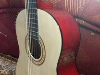 Гитара (с чехлом и каподастром)