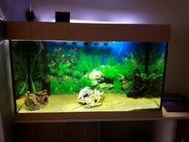 Продам аквариум 120 л